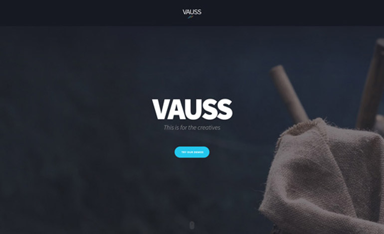 Vauss Template