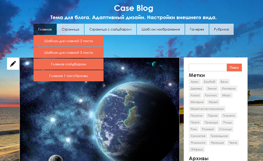 Wordpress Blog - Case