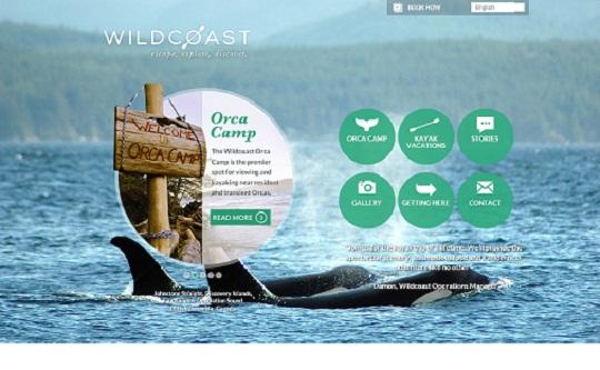 Wildcoast