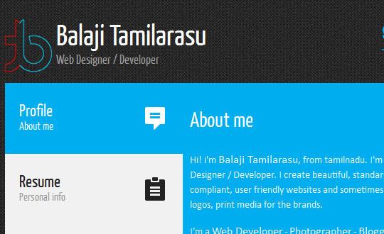 Balaji Tamilarasu's Portfolio