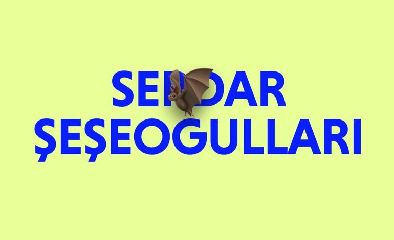 Portfolio of Serdar Seseogullari