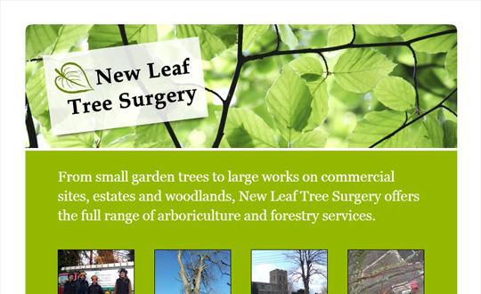 Oxford Tree Surgery