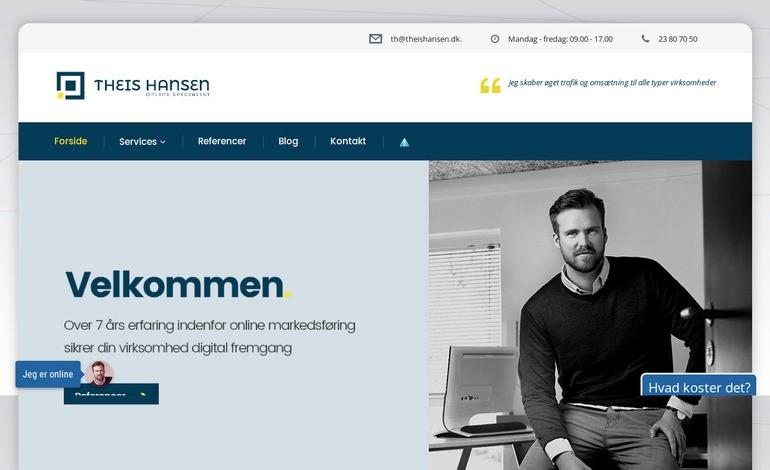 Online markedsforing Theis Hansen