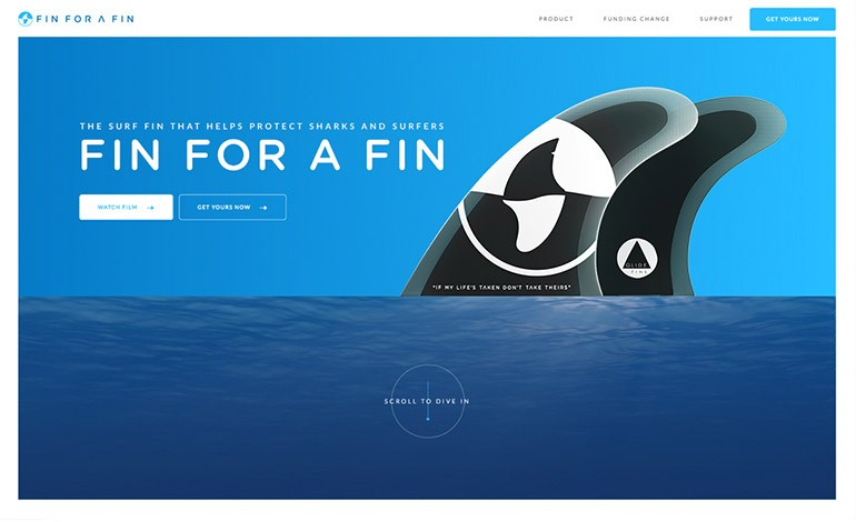 FIN FOR A FIN