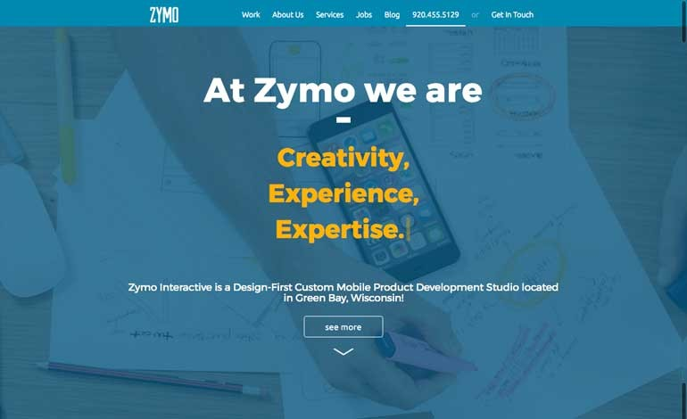 Zymo Interactive Development