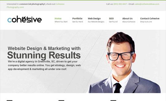 Cohesive Web Design