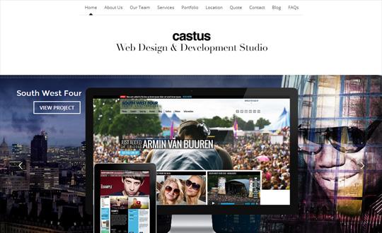 Castus Web Design & Development Studio