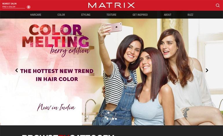 Matrix Professional India