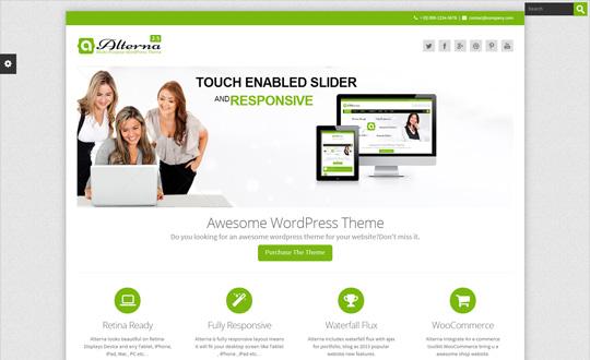 Alterna Multi-Purpose Responsive WordPress Theme