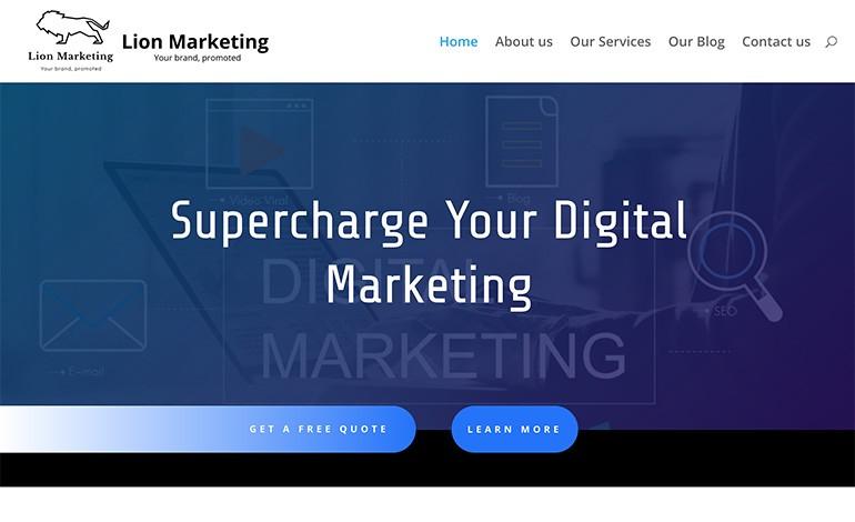 Lion Marketing Services LTD