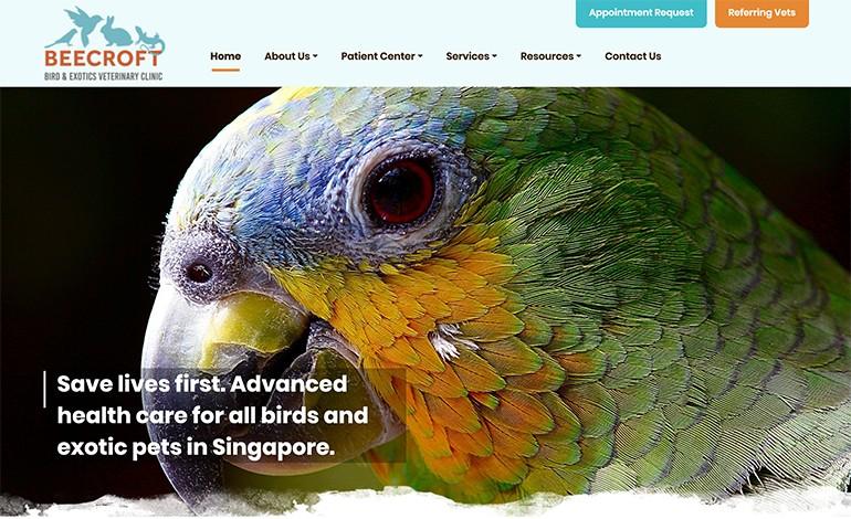 Birdvet Singapore