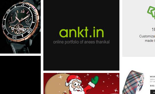 Online Portfolio Anees Thanikal