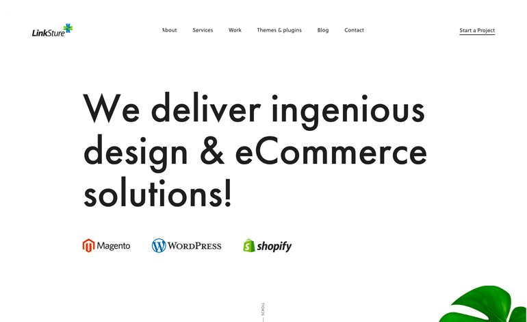 LinkSture eCommerce Agency