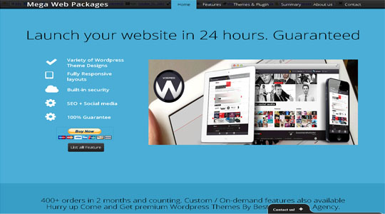 Mega Web Package