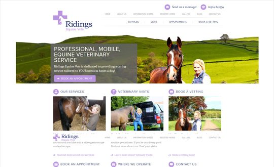 Ridings Equine Vets