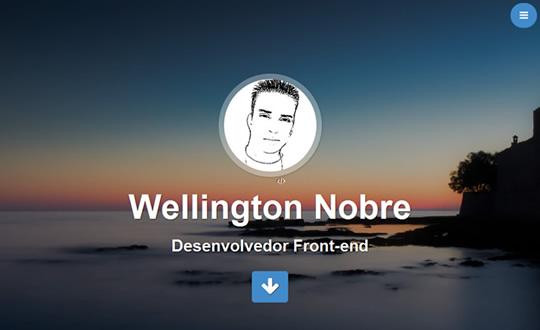 Wellington Nobre