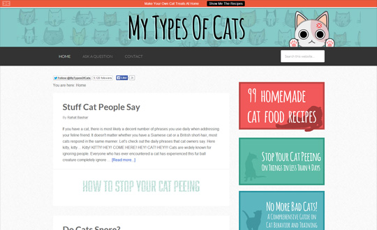 My Types of Cats