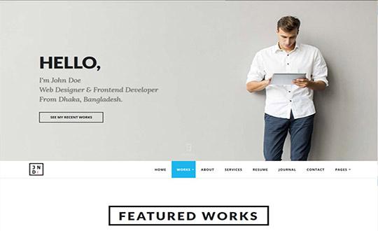 professional resume portfolio html template csslight