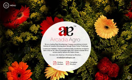 Arcadia Agro